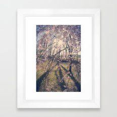 Sun Coming Through Framed Art Print