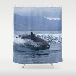 Wild and free bottlenose dolphin Shower Curtain