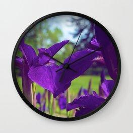 Irises in the sun Wall Clock