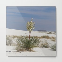 White Sands Soap Yucca Metal Print