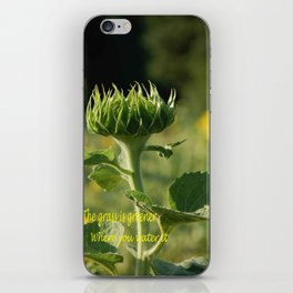 Greener Grass iPhone Skin