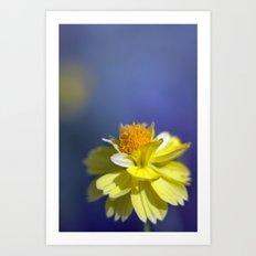 Yellow solitaire 2 038 Art Print