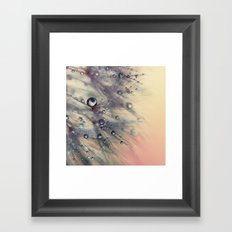 dandelion baby pink and blue Framed Art Print