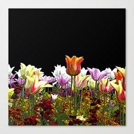 Tulips (black background) Canvas Print