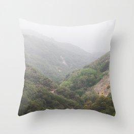Mist in the San Bernardino Mountains Throw Pillow