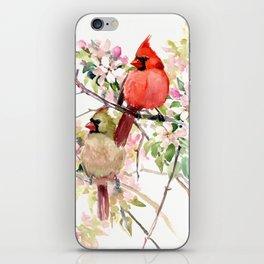 Cardinal Birds and Spring, cardinal bird design iPhone Skin