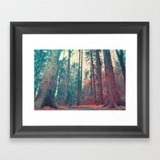 Slumber  Framed Art Print