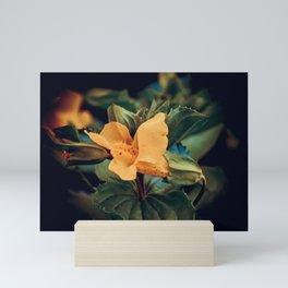 Little Lady | Musical Crime Productions | Botanical Photography Mini Art Print
