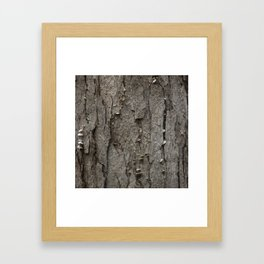 Adler Tree Bark Camouflage Framed Art Print
