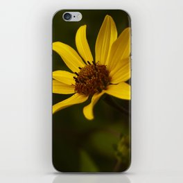Yellow Flowers iPhone Skin