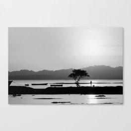 Despedida Canvas Print