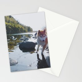 Shiba Inu At The River Stationery Cards