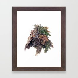 Colors of the Cypress Framed Art Print