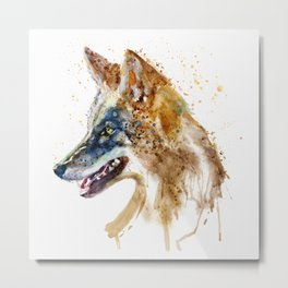 Coyote Head Metal Print