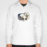 westie Hoodies featuring Dexter the Westie in His Doggie Bed by Circus Dog Industries