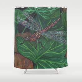What Light Shower Curtain