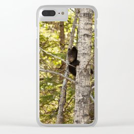 Baby Bear Photography Print Clear iPhone Case