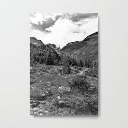 garden further alps kaunertal glacier tyrol austria europe black white Metal Print