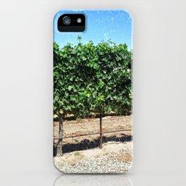 Santa Barbara Vineyard iPhone Case