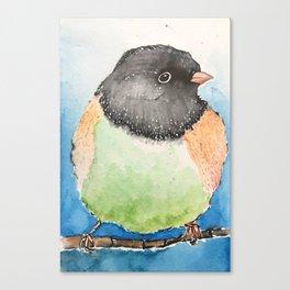Dark-eyed junco watercolor Canvas Print