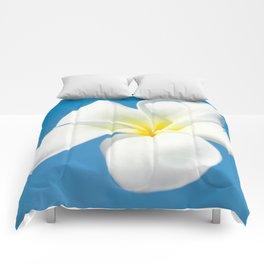 pua melia pakahikahi Comforters