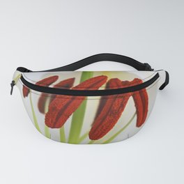 A Whisper of Red Fanny Pack