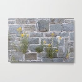 Blooming on Hard Rocks Metal Print