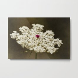 Wild flower #105 Metal Print