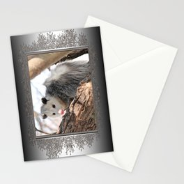 North American Opossum in Winter Stationery Cards