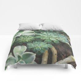 Botanical Gardens Succulent #625 Comforters
