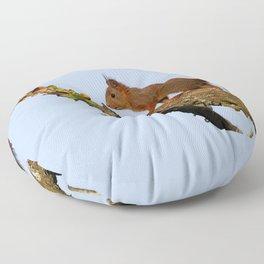 Petit écureuil a trouvé des noisettes.... Floor Pillow