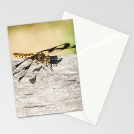 Hello Dragonfly Stationery Cards