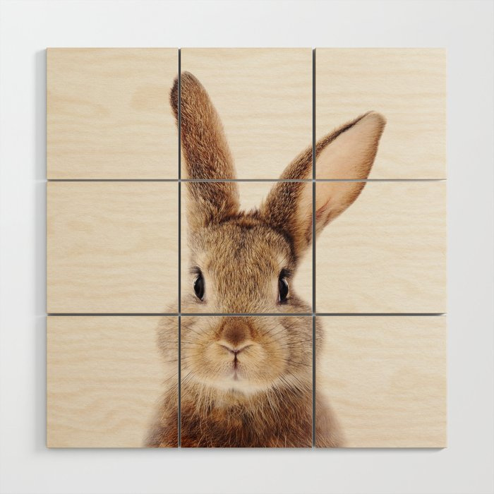 Baby Rabbit, Baby Animals Art Print By Synplus Wood Wall Art