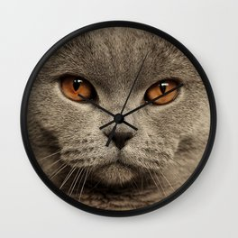 Diesel, the cat - (close up)  Wall Clock