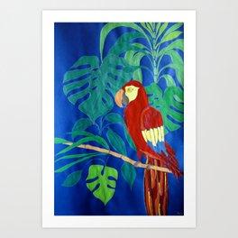 Il Pappagallo Felice (The Happy Parrot) Art Print