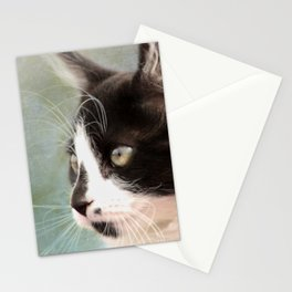 The Ships Cat Stationery Cards