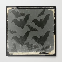 ANTIQUE  SHABBY CHIC  BATS ART DESIGN Metal Print