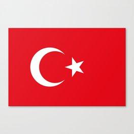 Flag of Turkey - Turkish Flag Canvas Print