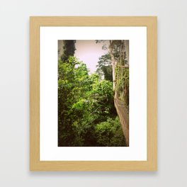 Canopy in African Jungle Framed Art Print