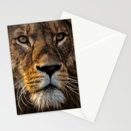 Dark lion's face Stationery Cards