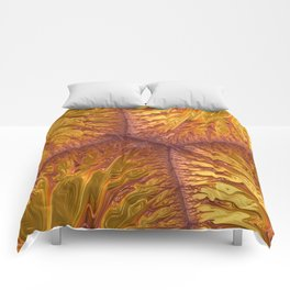 Frax Texture Comforters