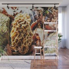 Morel Mushroom in the Wild Wall Mural