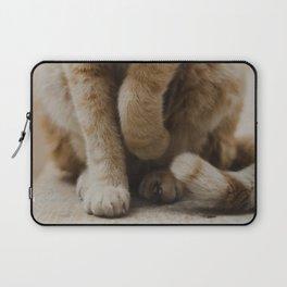 Coquettish Cat in Israel Laptop Sleeve