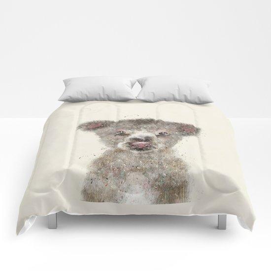 little koala Comforters