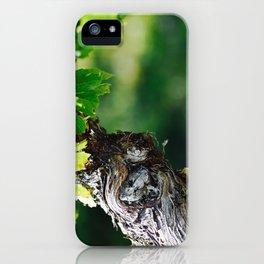 Winding Treasure iPhone Case