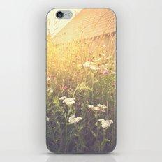 Boho Summer Sunshine iPhone Skin