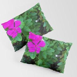 Magentas 1 Pillow Sham