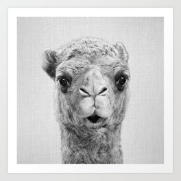 Camel - Black & White Art Print