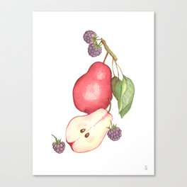 Fruits.... :\ Canvas Print