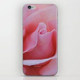 Rose Petal Pink iPhone Skin